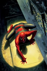 Spectacular Spider-Man by Marvel - Box Canvas sized 21x32 inches. Available from Whitewall Galleries